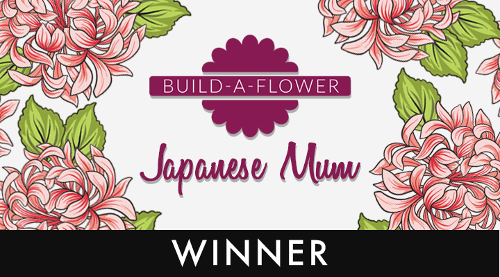 build-a-flowerbloghopwinner