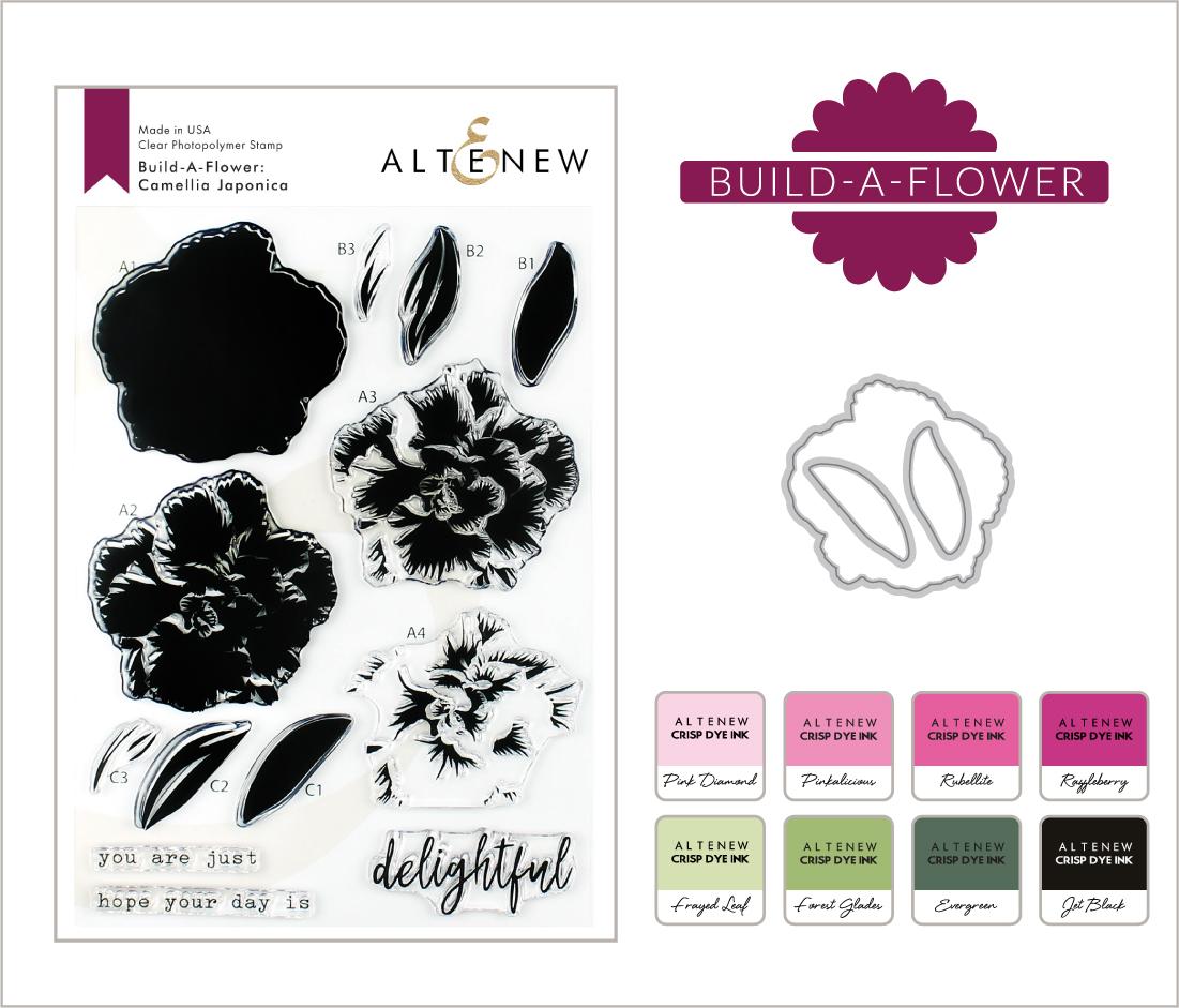 BAF Camellia Japonica_Blog Post with Ink