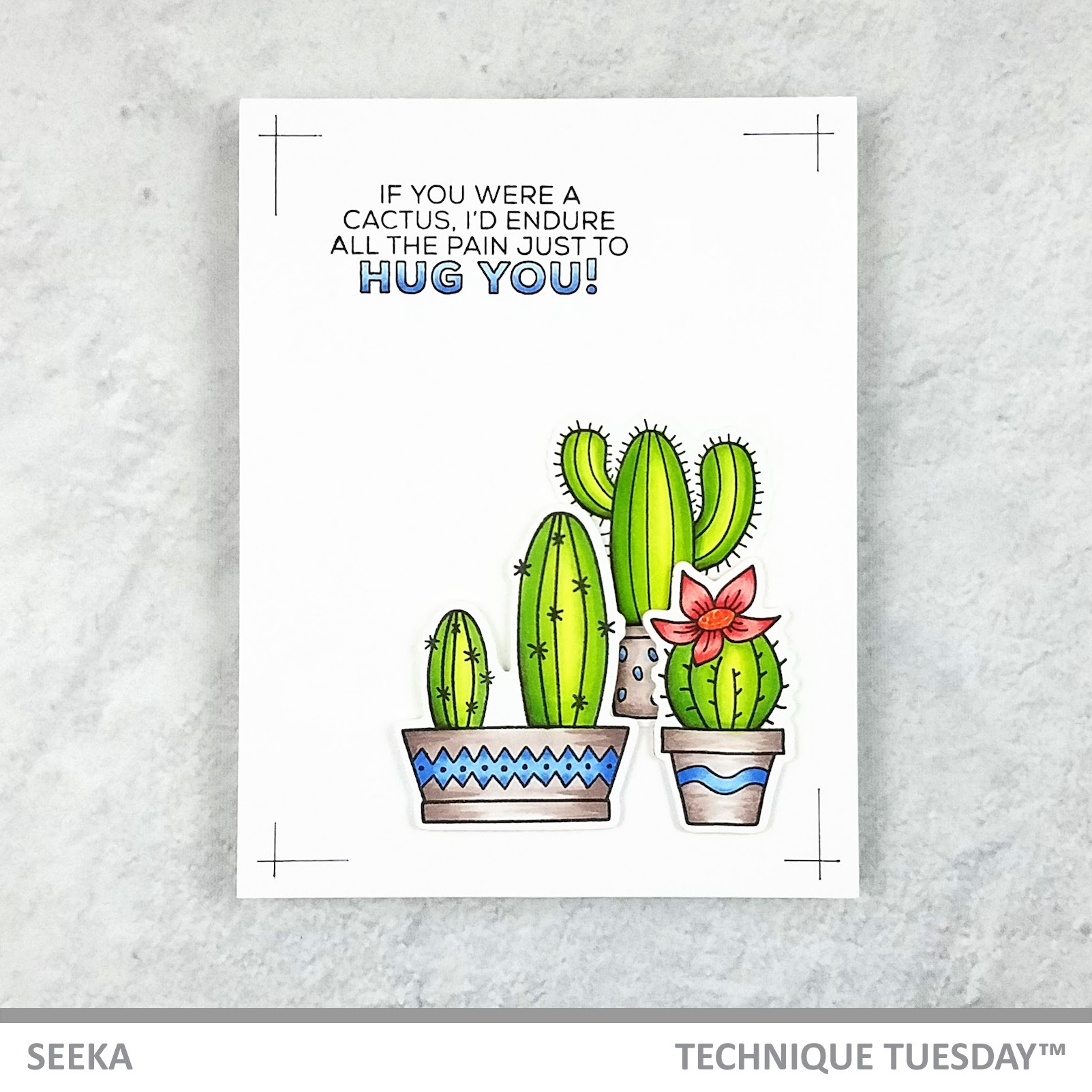 Seeka - A Little Prickly 1